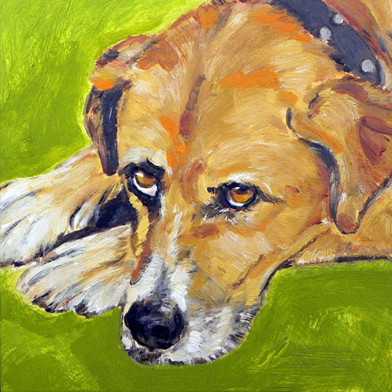 Pet Portrait Painting. Retrato de Zeus. Óleo sobre madera. 2010.