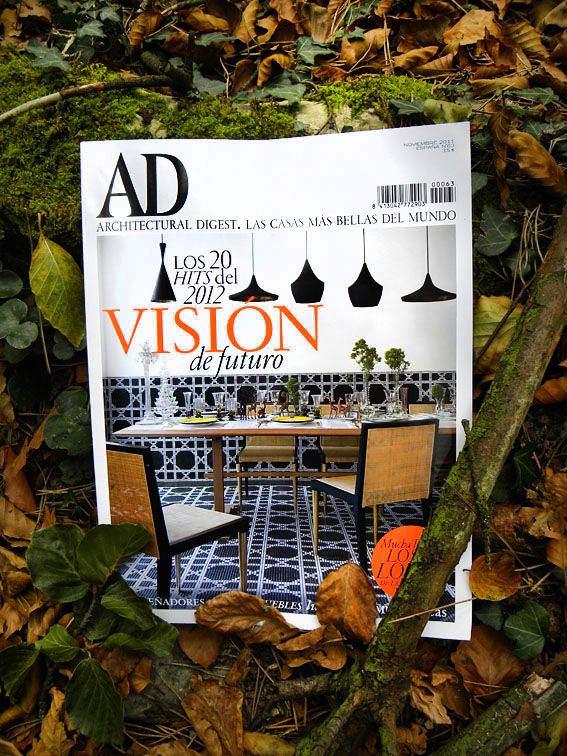 Cover november AD