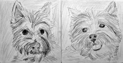 Pets Portrait Painting