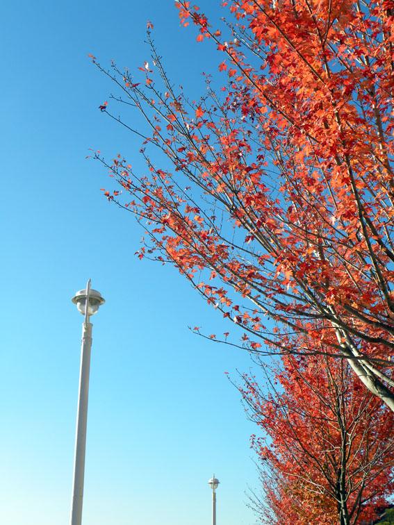 Cielo azul en Bilbao